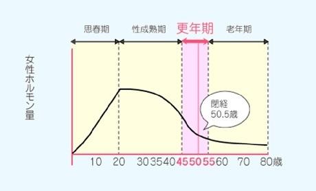 更年期 Γ 女性 gtp 高い